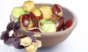 Manfaat Mengkonsumsi Jengkol Bagi Kesehatan Tubuh