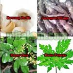 Beberapa Tumbuhan Bahan Membuat Pestisida Nabati