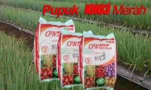 Kandungan Unsur Pupuk KNO3 Merah