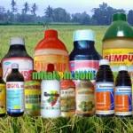 Daftar Harga Herbisida Terbaru 2015