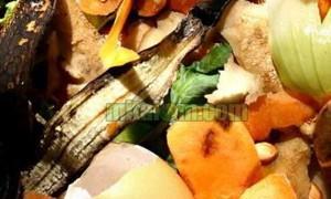manfaat limbah buah-buahan
