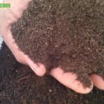 Fungsi dan Manfaat Bekatul Pada Pembuatan Kompos
