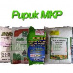 Pupuk MKP (Mono Kalium Phosphate)