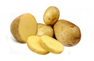 Kandungan Gizi dan Nutrisi Umbi Kentang