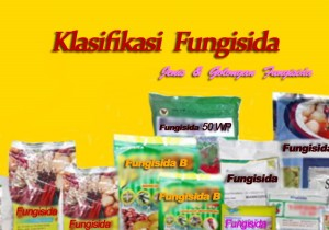 Jenis-Jenis Fungisida