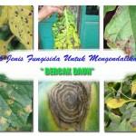 36 Jenis Fungisida Untuk Mengendalikan Bercak Daun