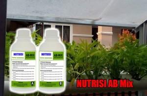 Pengertian Nutrisi Hidroponik