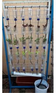 Sayuran Vertikultur Hidroponik