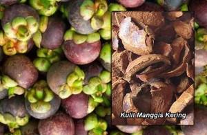 Manfaat dan Khasiat Kulit Manggis