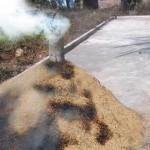 Cara Membuat Arang Sekam Yang Benar
