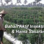 Jenis – Jenis Insektisida Dan Hama Sasaran (page 1)