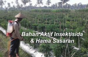 Bahan Aktif Insektisida