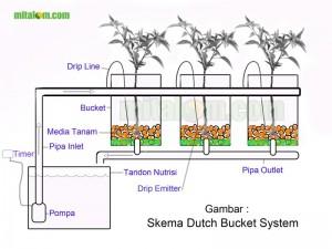 DB System