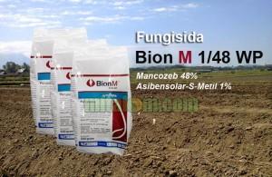 kelebihan dan kekurangan fungisida Bion M 1/48WP