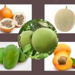 25 Jenis Buah Dengan Kandungan Vitamin A Tertinggi