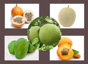 buah sumber vitamin A