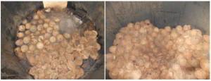 Susunan sabut dan tempurung kelapa dalam ruang pembakaran (pirolisa)