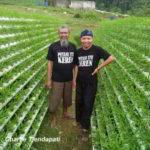 Inspiratif..!! Hanya Menanam KANGKUNG Petani ini Berpenghasilan Rp. 97,2 Juta per Bulan