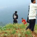 Foto – foto Kerusakan Kebun BAWANG DAUN di Majalengka Akibat Selfie