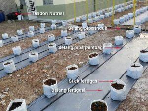 Cara Memasang Instalasi Sistem Fertigasi