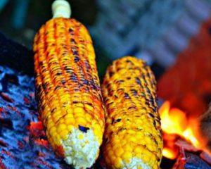 Cara Membakar Makanan Yang Baik Agar Terhindar Dari Resiko KANKER
