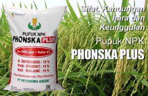 Keunggulan dan Manfaat Pupuk NPK Phonska Plus