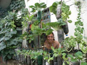 Ide Kreatif Berkebun Sayuran Vertikultur