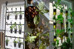 Kebun Vertikultur Indoor di Jendela