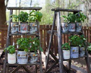 Membuat Vertikal Garden dari Kaleng Bekas