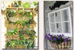 Membuat Vertikal Garden di Dindinig Tembok Menggunakan Karung Goni Bekas