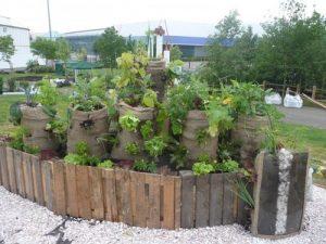 Membuat Taman Vertikultur Menggunakan Karung Goni Bekas
