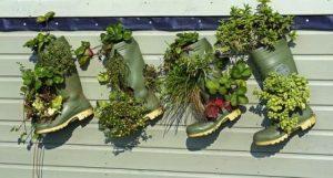 Membuat Kebun Vertikultur dengan Sepatu Boot Bekas