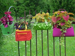 Membuat Vertikal Garden Sederhana dan Murah