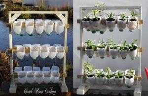 Berkebun Secara Vertikultur di Botol Bekas