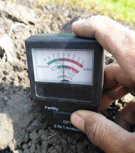 4 Cara Sederhana Mengetahui Tanah Masam dan Faktor yang Mempengaruhi pH Tanah