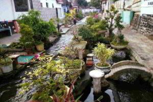 Foto-foto Keren Tentang Kota Lumajang