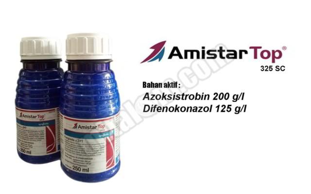 Fungisida Amistartop Untuk Bawang Merah