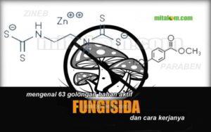 Daftar Golongan Bahan Aktif Fungisida
