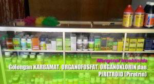 Insektisida Golongan Karbamat, Organofosfat, Organoklorin dan Piretroid