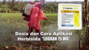 Herbisida LOGRAN 75WG : Bahan Aktif, Dosis dan Cara Aplikasi Logran 75 WG pada Berbagai Jenis Tanaman