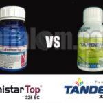 Amistartop VS Tandem, Mana yang Lebih Unggul?