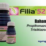 Fungisida FILIA 525 SE : Bahan Aktif, Dosis, dan Waktu Penyemprotan FILIA untuk Padi, Bawang, Kakao dan Lain-lain