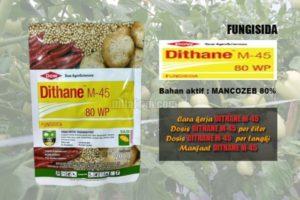 DITHANE M-45 80WP : Manfaat dan Keunggulan Fungisida Dithane M-45