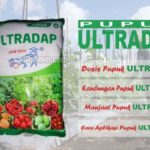 Dosis Pupuk ULTRADAP – Kandungan dan Manfaat Pupuk Ultradap untuk Tanaman Pangan, Sayuran dan Buah-buahan