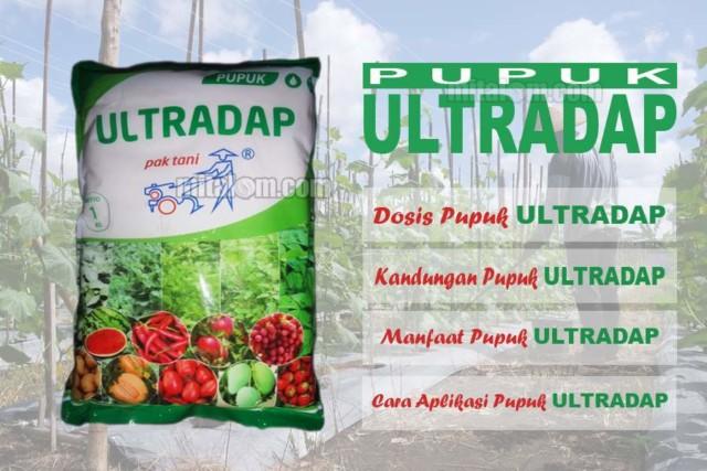 Cara Menggunakan Pupuk Ultradap Pupuk Perangsang Bunga Lebatkan Buah