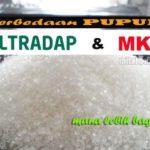 Perbedaan Pupuk ULTRADAP dan MKP : Jangan Keliru !! Berikut Manfaat dan Waktu Aplikasi MKP dan Ultradap yang Benar