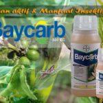 Insektisida BAYCARB 500 EC : Inilah Bahan Aktif, Dosis dan Manfaat Baycarb !!