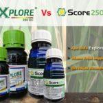 Fungisida EXPLORE vs SCORE, Bolehkah Dicampur? Apa Perbedaan Dua Fungisida ini?
