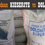 Perbedaan Pupuk KIESERITE dan DOLOMIT : Ini Manfaat dan Kegunaan Pupuk Magnesium yang Wajib Diketahui !!