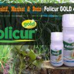 Bahan Aktif Fungisida FOLICUR GOLD 430 SC : Manfaat, Dosis Lengkap Dengan Cara Aplikasinya
